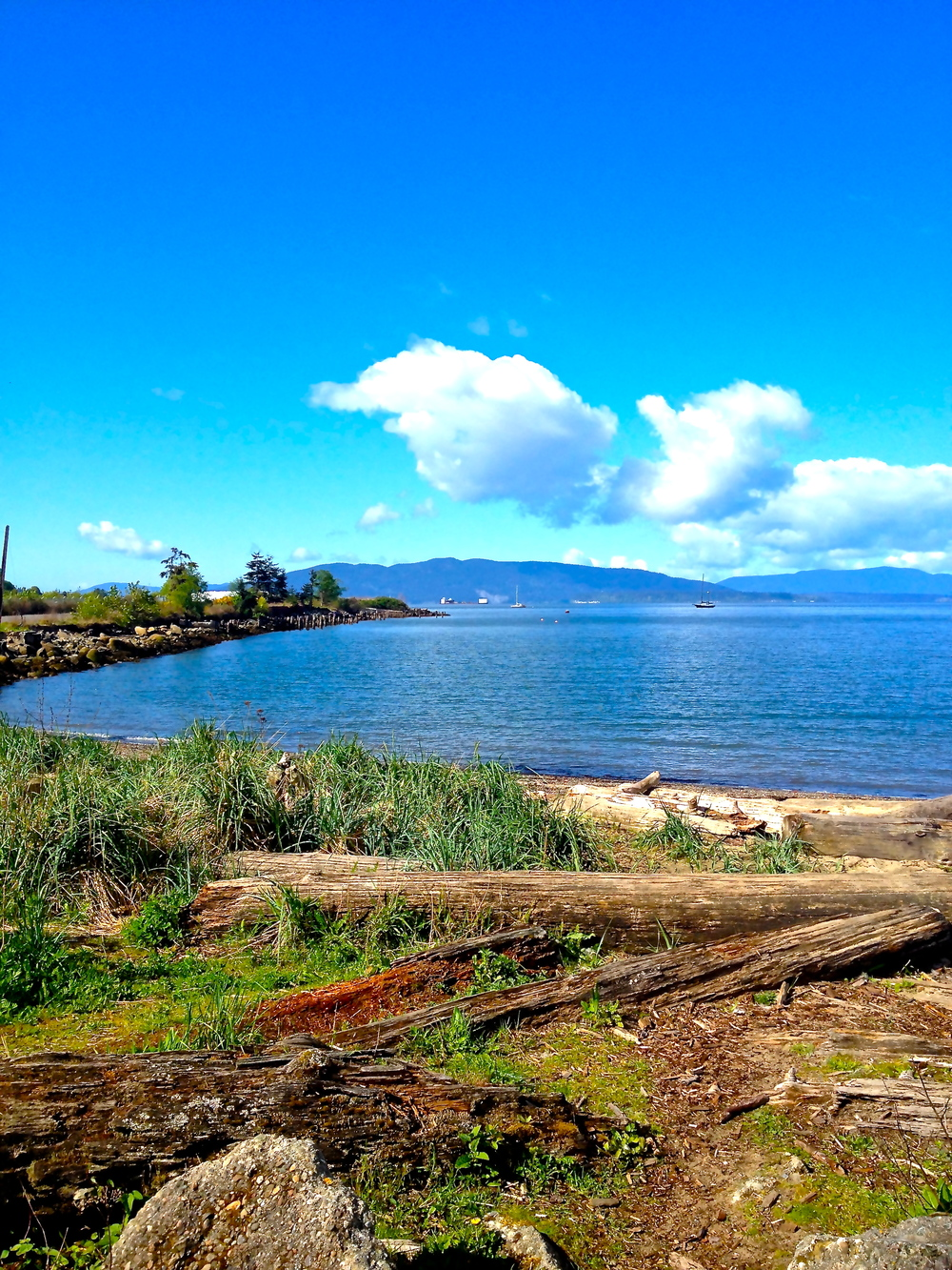 Spectacularly gorgeous day on Bellingham Bay