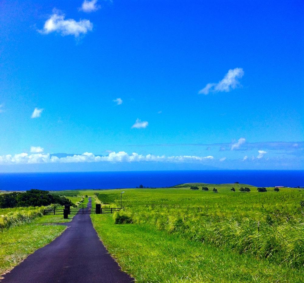 Where the road meets the sea.Driving towards Maui, Waimea, Big Island, HI 2012