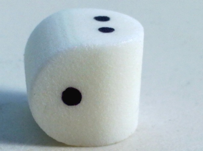 two-sided-dice.jpg