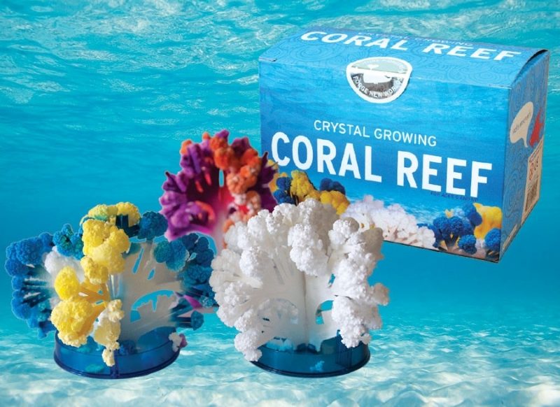 Crystal Growing - Coral Reef