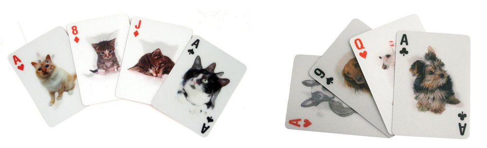 Cats and Dogs 3D Playing Cards
