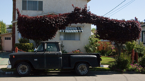Berkeley Handlebar Topiary with Truck -- by Joe Reifer