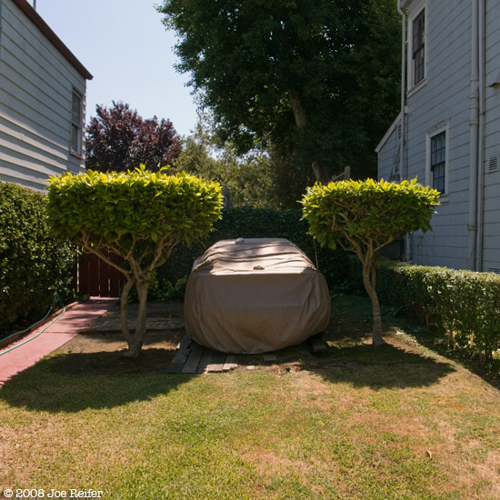 These are a few of my favorite things (covered car with shrubs) -- by Joe Reifer