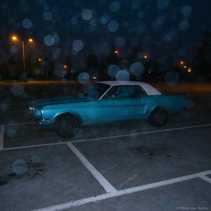 Mustang in the fog -- by Joe Reifer