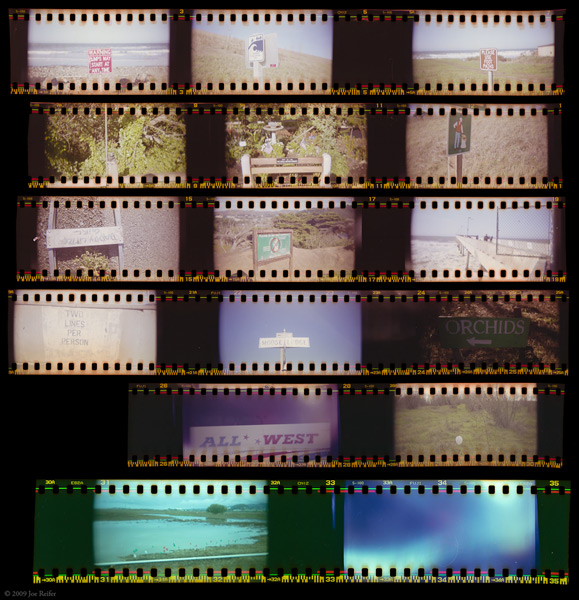 Sprocket Holga Proof Sheet -- by Joe Reifer
