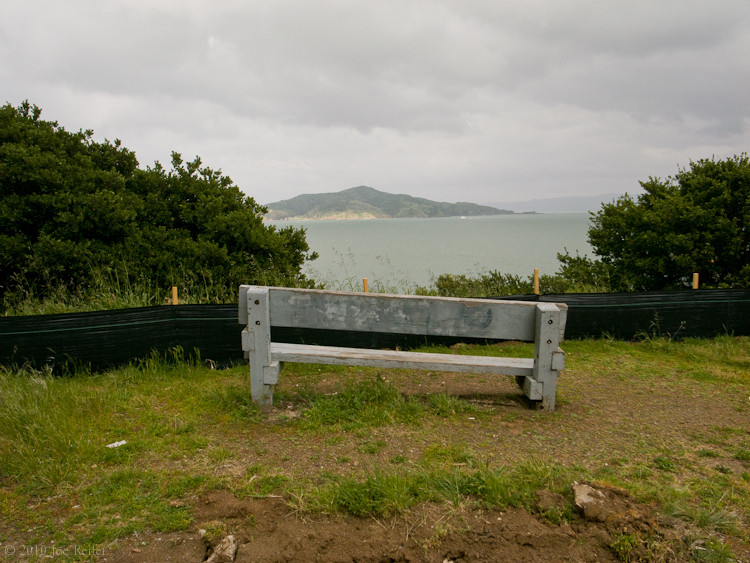 View (Angel Island, partially obstructed) -- by Joe Reifer