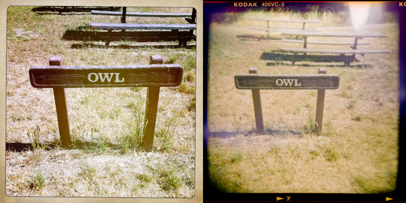 Holga vs Hipstamatic: Owl picnic area -- by Joe Reifer