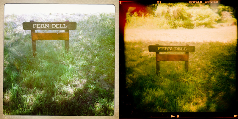 Holga vs Hipstamatic: Fern Dell -- by Joe Reifer