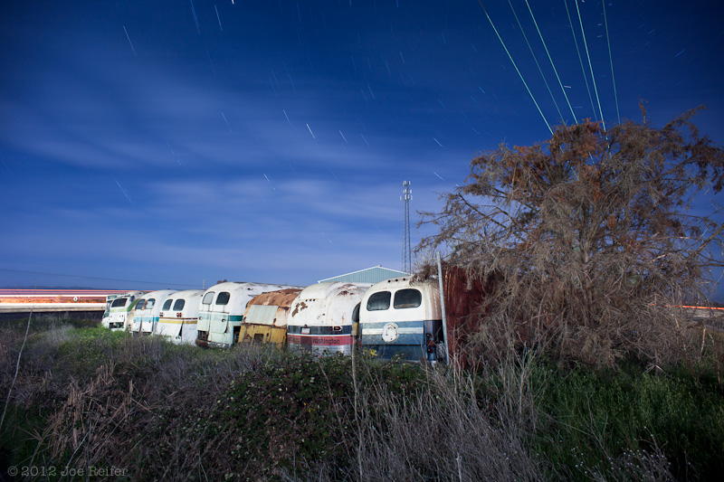 Out in the weeds behind the bus yard -- by Joe Reifer