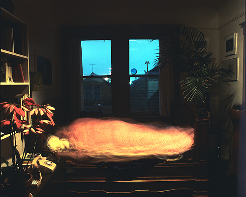 Self Asleep 4.5 Hours, Potrero Hill, San Francisco, 1984 -- by Steve Harper