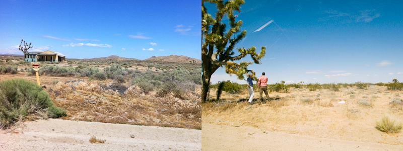 desert_20110517_13.jpg