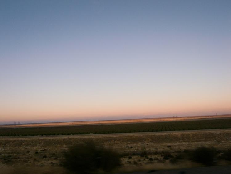 desert_20101122_022w.jpg