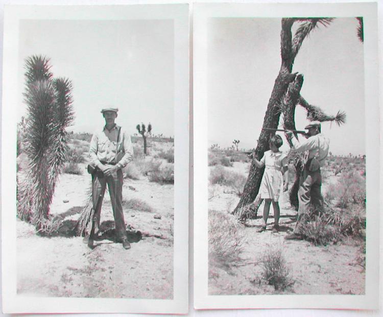 desert_20101122_024w.jpg