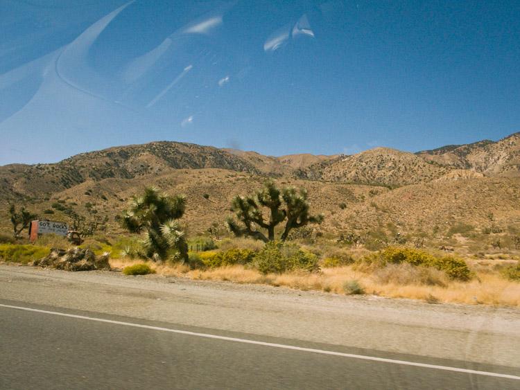 desert_20100926_037w.jpg