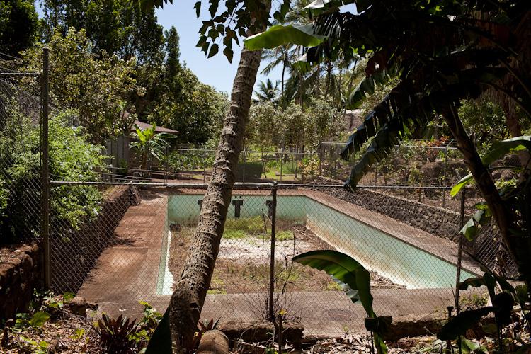 hawaii_20090605_20w.jpg