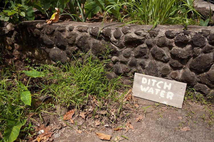 hawaii_20090605_25w.jpg