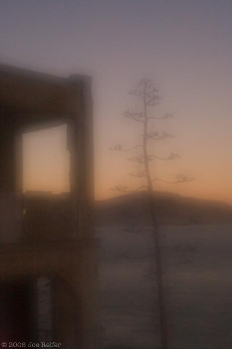 alcatraz_20081113_25w.jpg