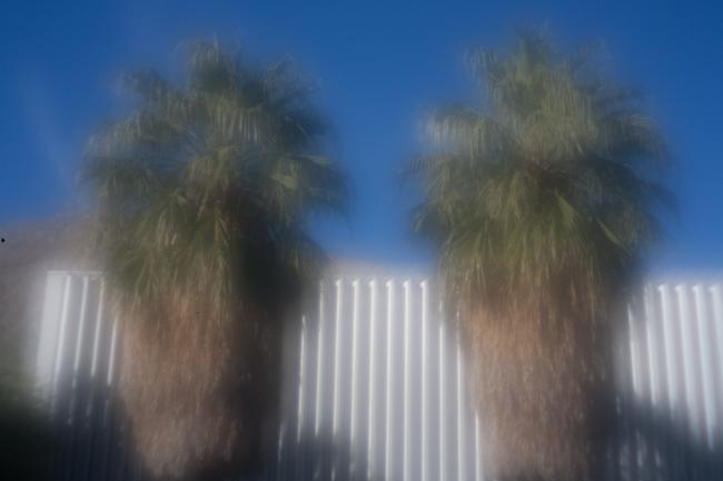 palmsprings_20081231_05w.jpg