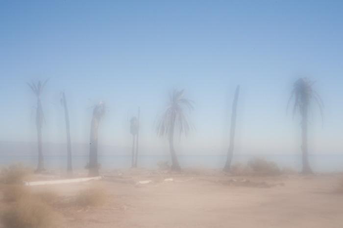 palmsprings_20081230_07w.jpg