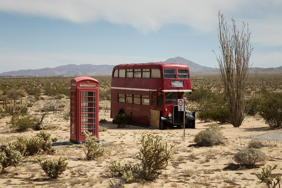 Joshua Tree Bus Tour