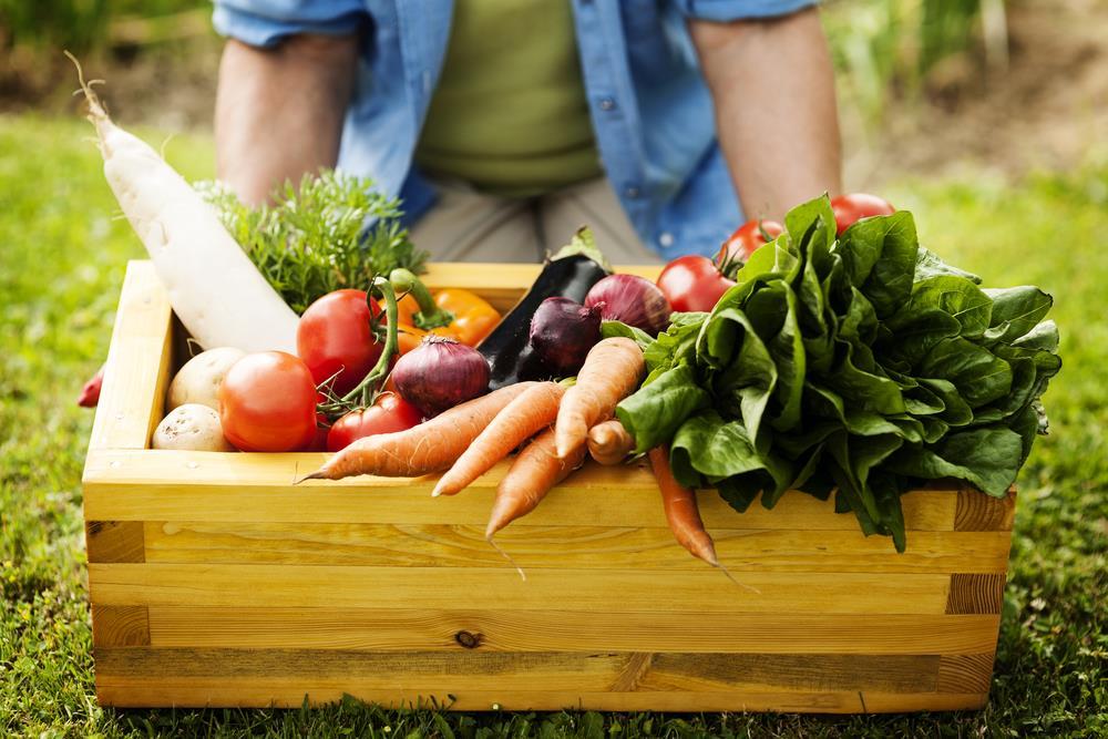 five food crops