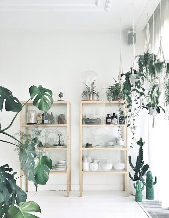 scandinavian cabin house plants.jpg