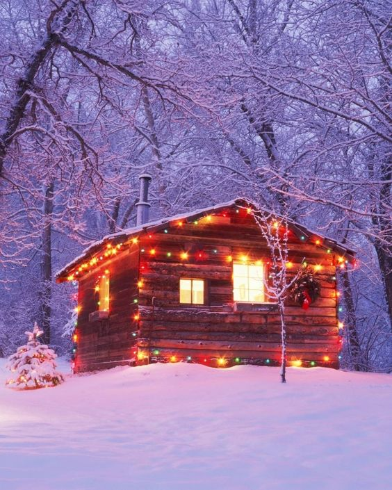 Colored cabin Christmas lights.jpg