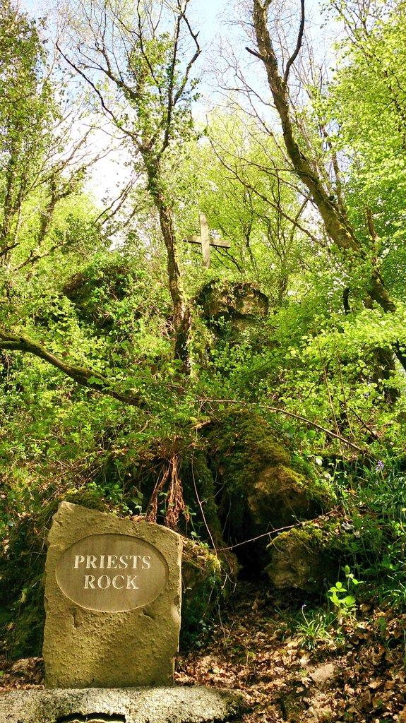 Gortletteragh Wood