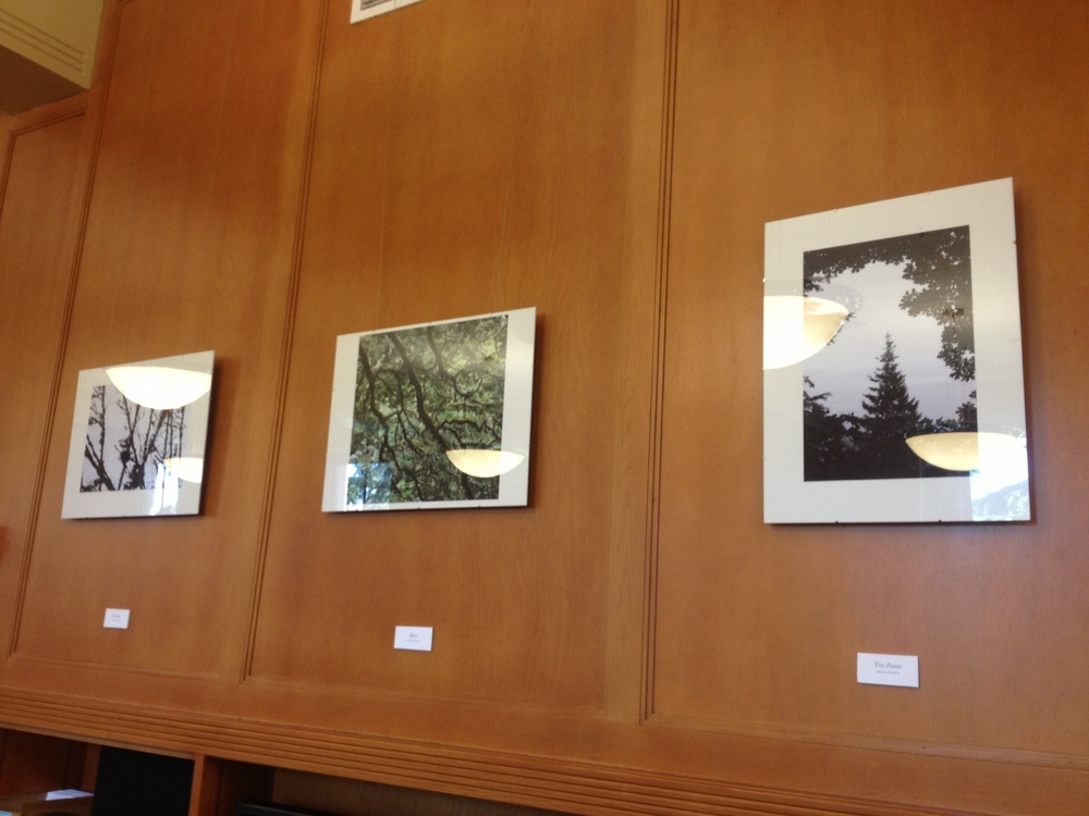 photograph taken by Andrew Seaton, framed work made by CAS with help of staff at Mills International Center