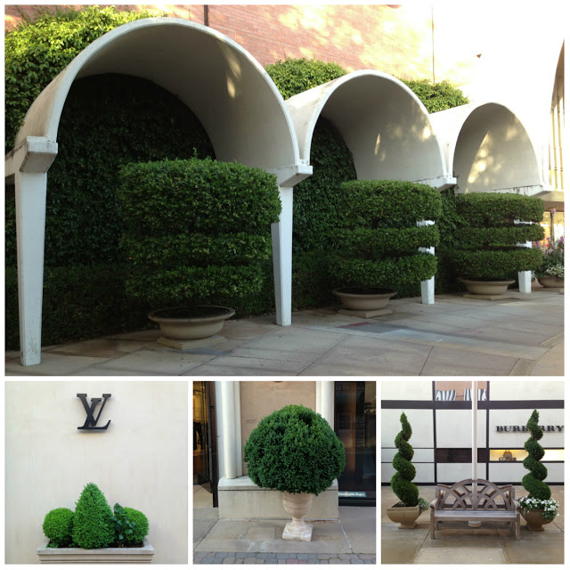 Topiary+Collage.jpg