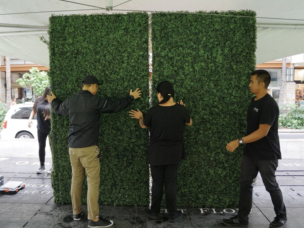 8'x8' Boxwood backdrop used as the foundation for the floral wall.