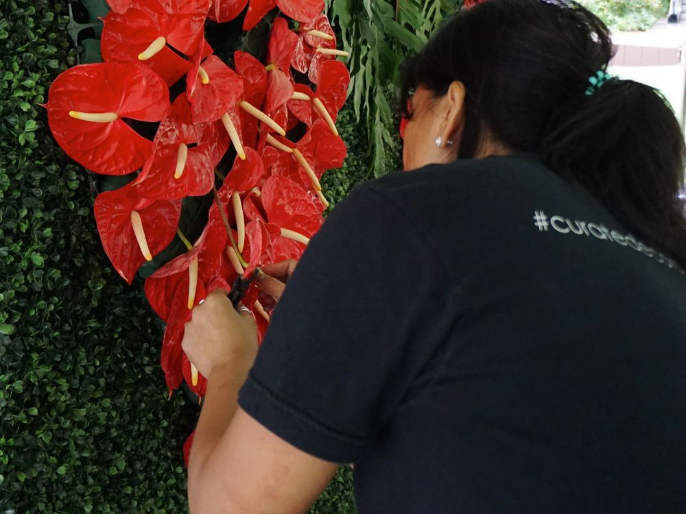 Beautiful anthuriums were individually applied onto the floral backdrop.