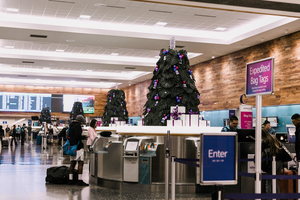 Curate-HA-Holiday-Lobby-Trees.jpg