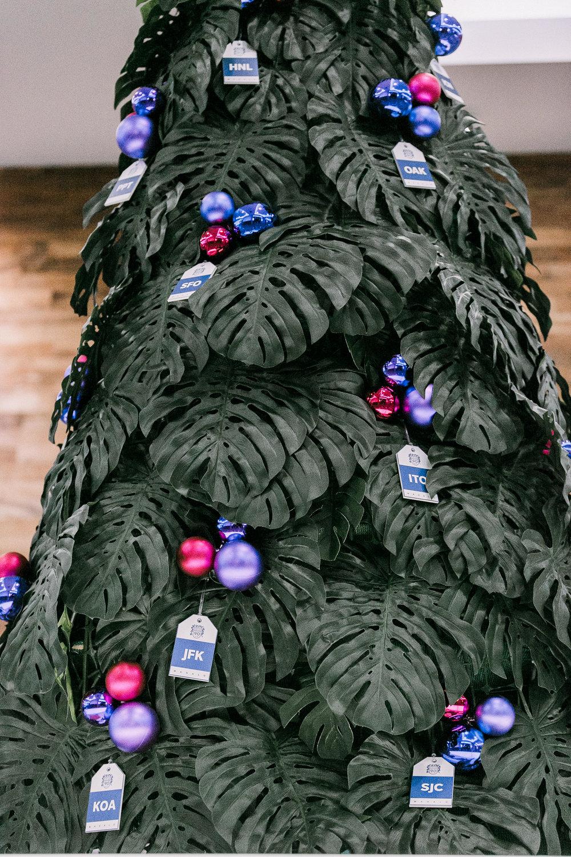 Curate-HA-Holiday-Monstera.jpg