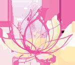 scyoga-logo-lotus-small.png