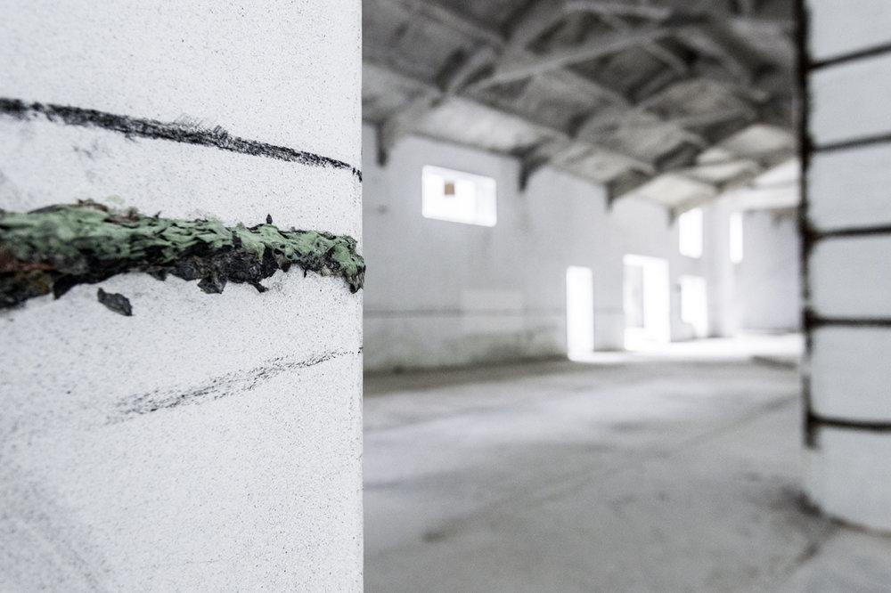 The line  di Phillippa Peckham, 2015 - Carta pesta e carboncino - Dimensioni ambientali - Foto Udo Koehler, Franco Dal Col, Phillippa Peckham