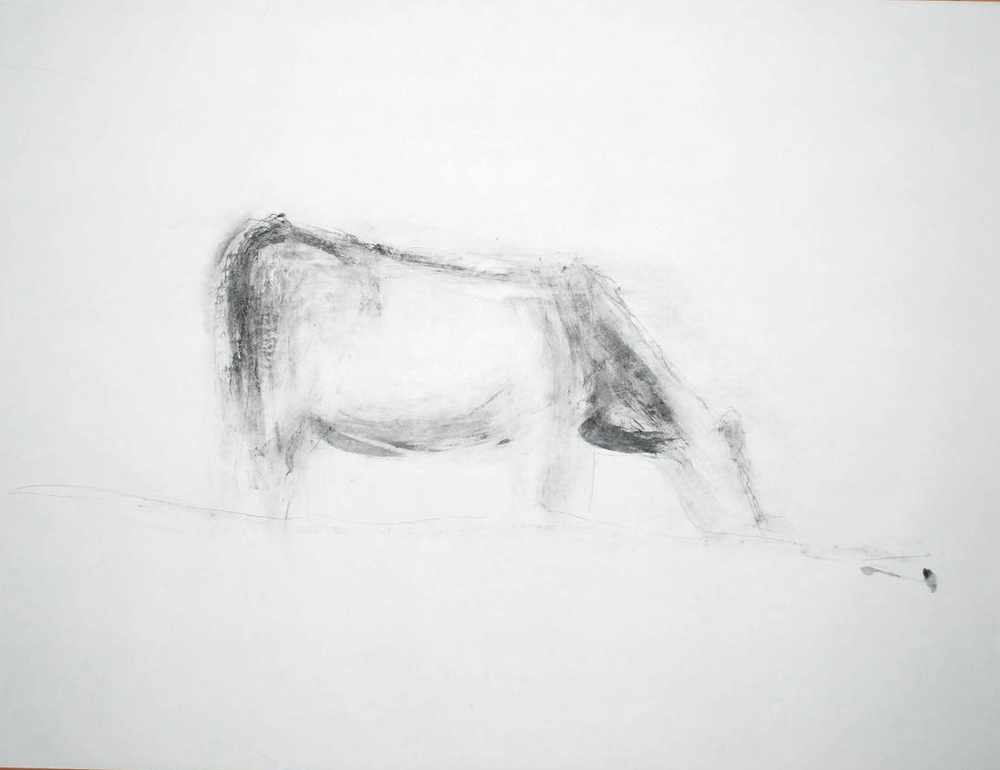 graphite drawing 12.JPG