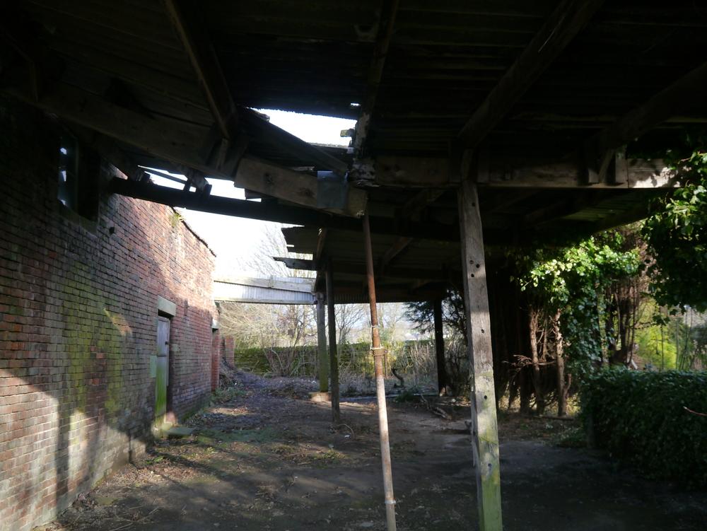 broken canopy.JPG