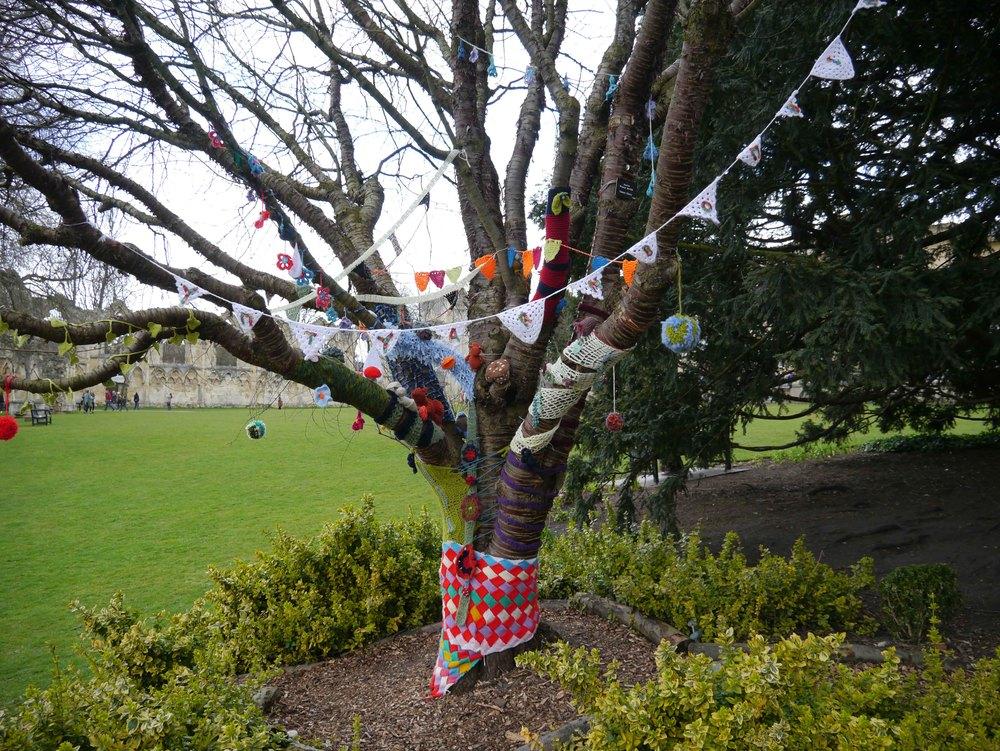 Yarn bombing in York Museum Gardens 4.jpg