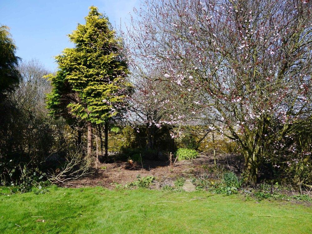 garden at the barn.jpg