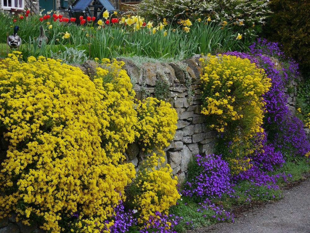 tissington garden.jpg
