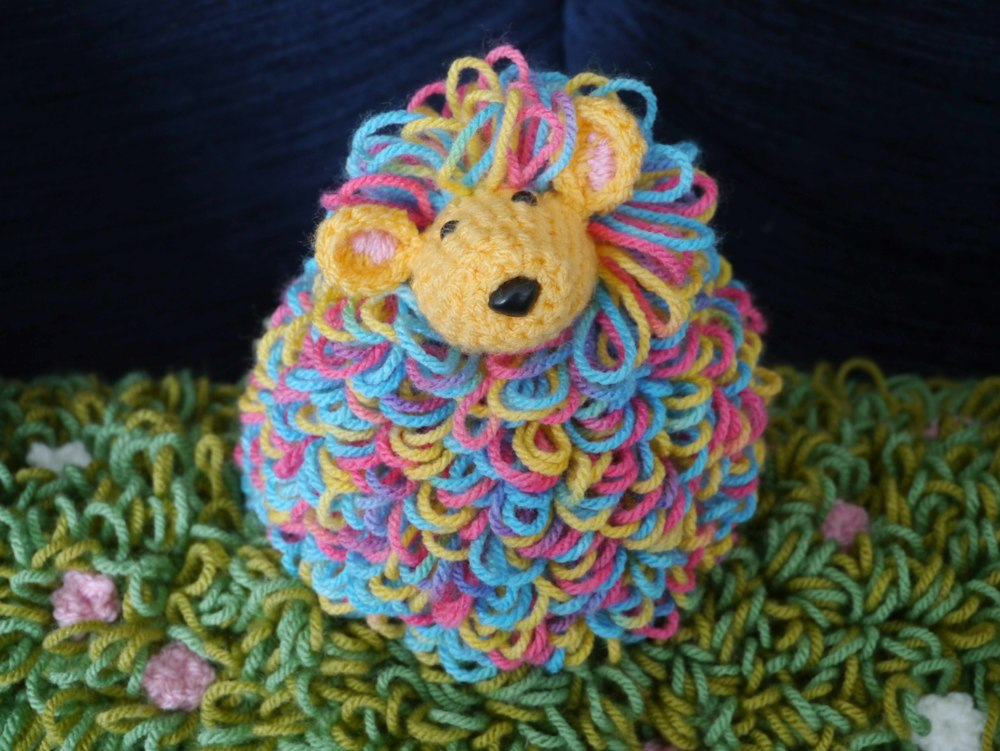 Multi coloured sheep - dare to be different!