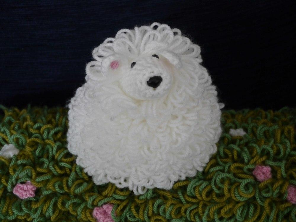 Common or garden white sheep