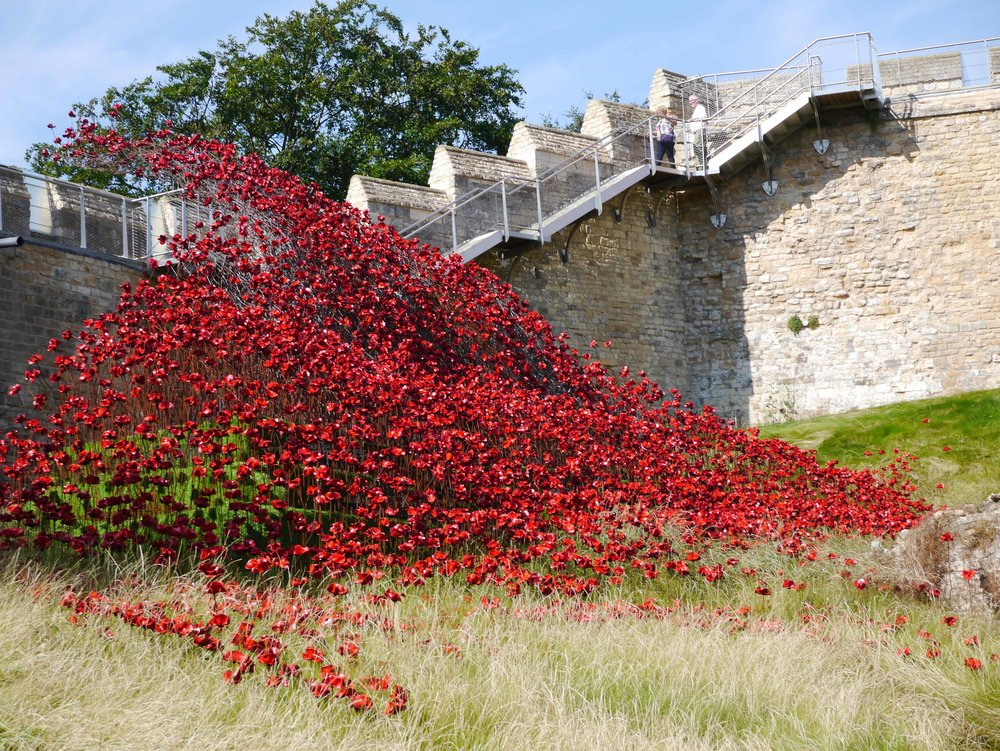 Lincoln Castle Poppy Wave