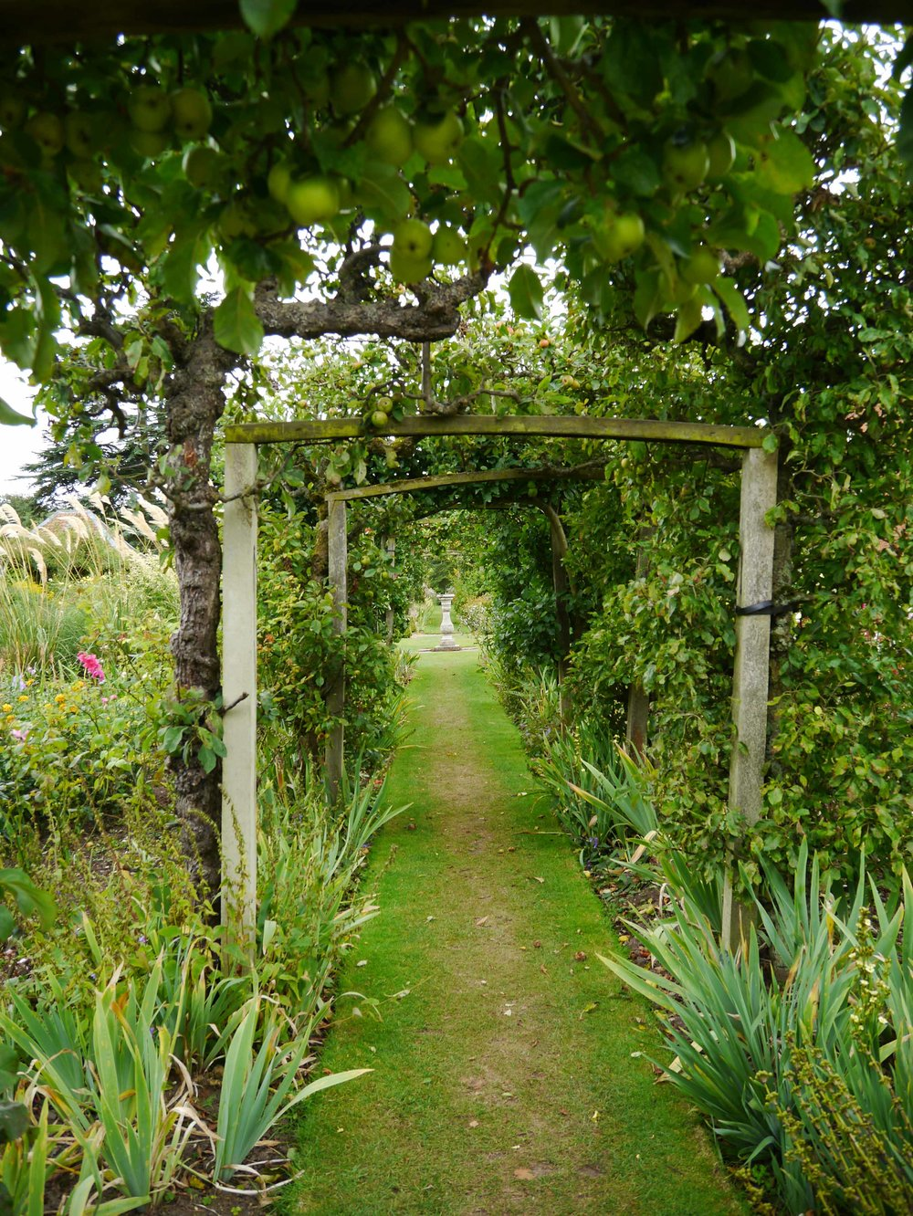 Gunby Hall - apple tree arches