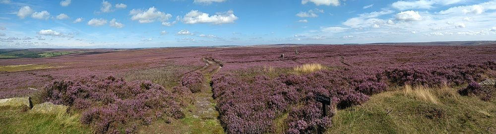 North Yorkshire Moors.jpg