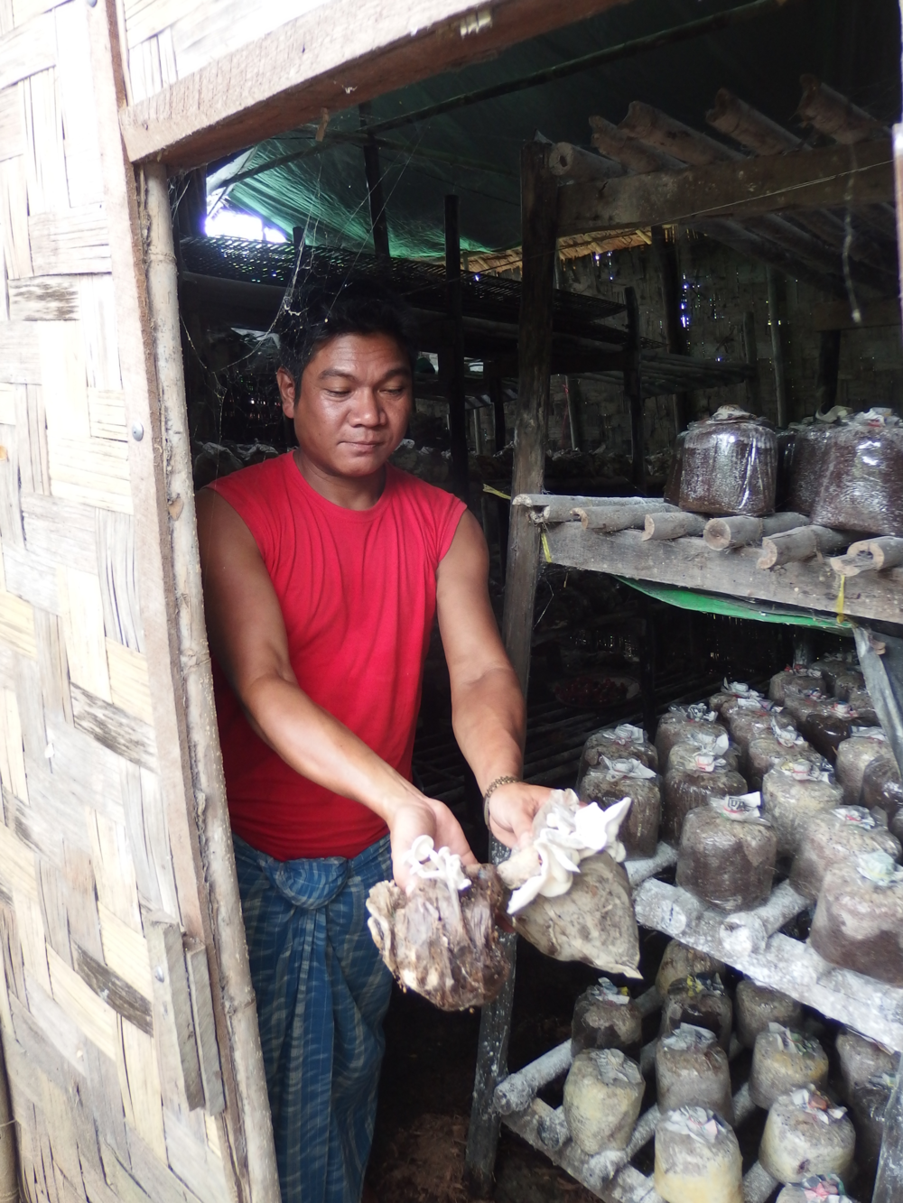 U Kyaw La hands me some of his organic mushrooms.