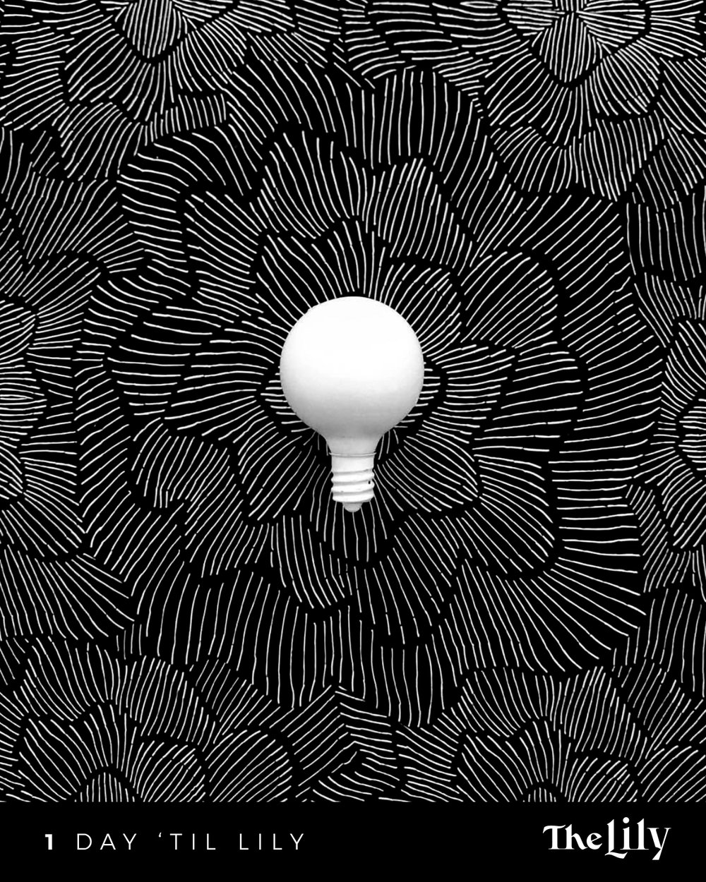 01_Lightbulb_02.jpg