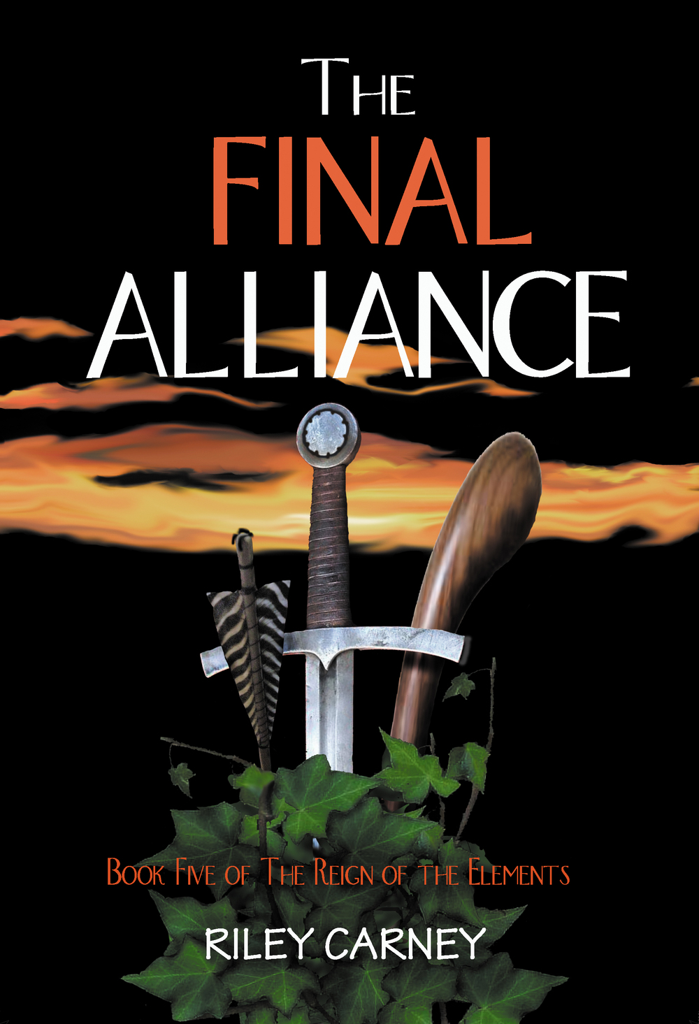 The Final Alliance Cover High Res.jpg