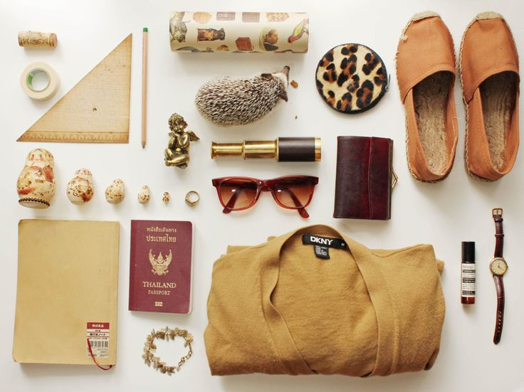 I love things organized neatly but honestly who packs their pet hedgehog when traveling? Image Source: Pinterest